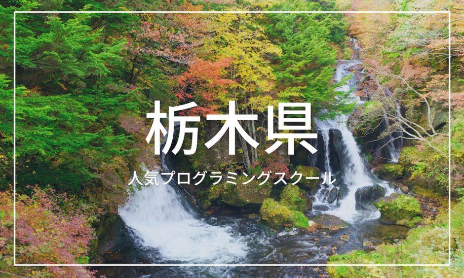 栃木県 プログラミングスクール